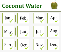 Coconut Exporters | Wholesale Coconut Suppliers in India